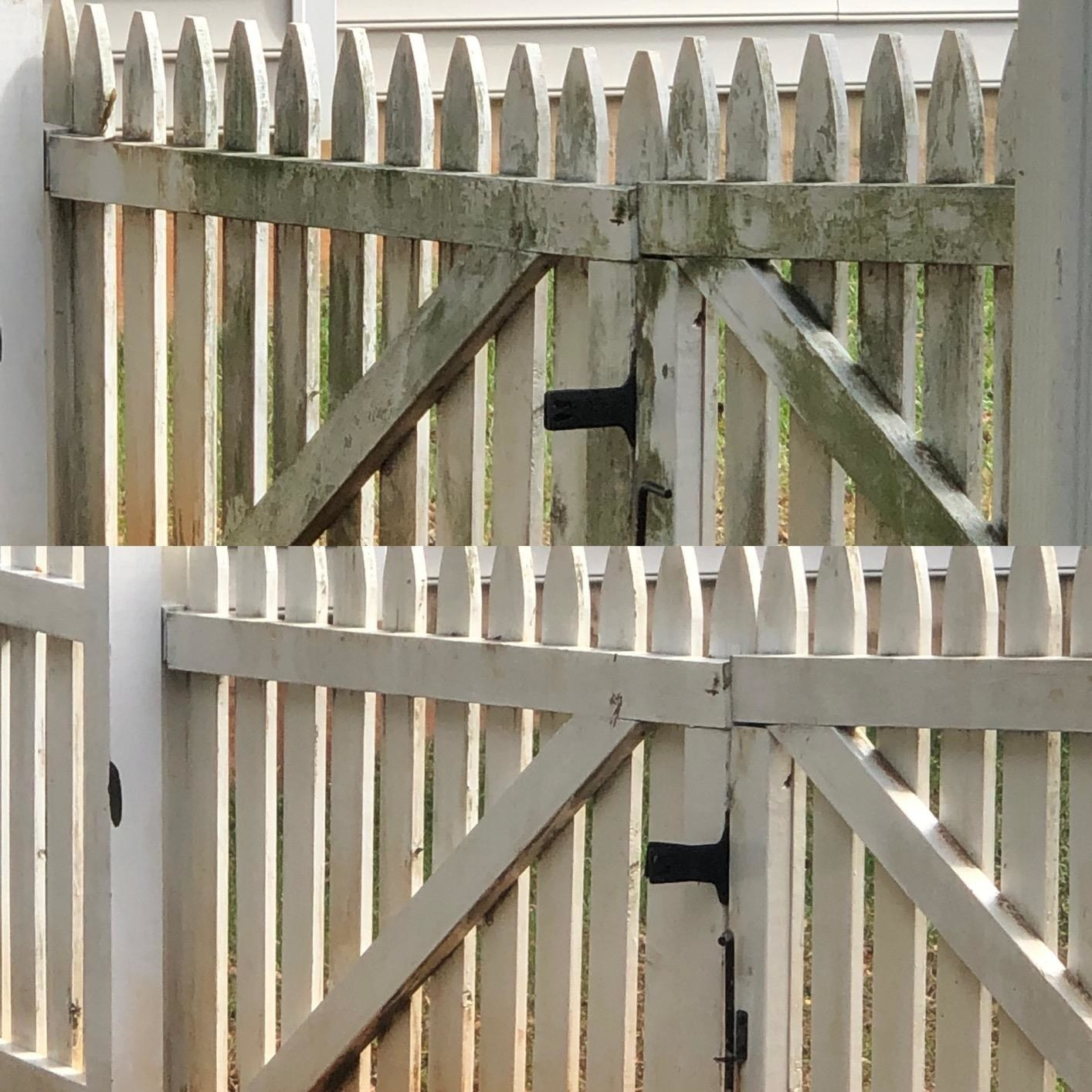reviewer before and after pictures of a white fence; before it is green and covered in mildew, and after it is clean and white