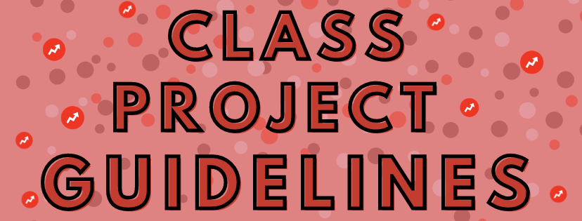 class project guidelines