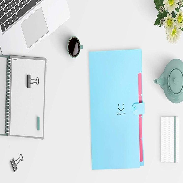 the folder in blue