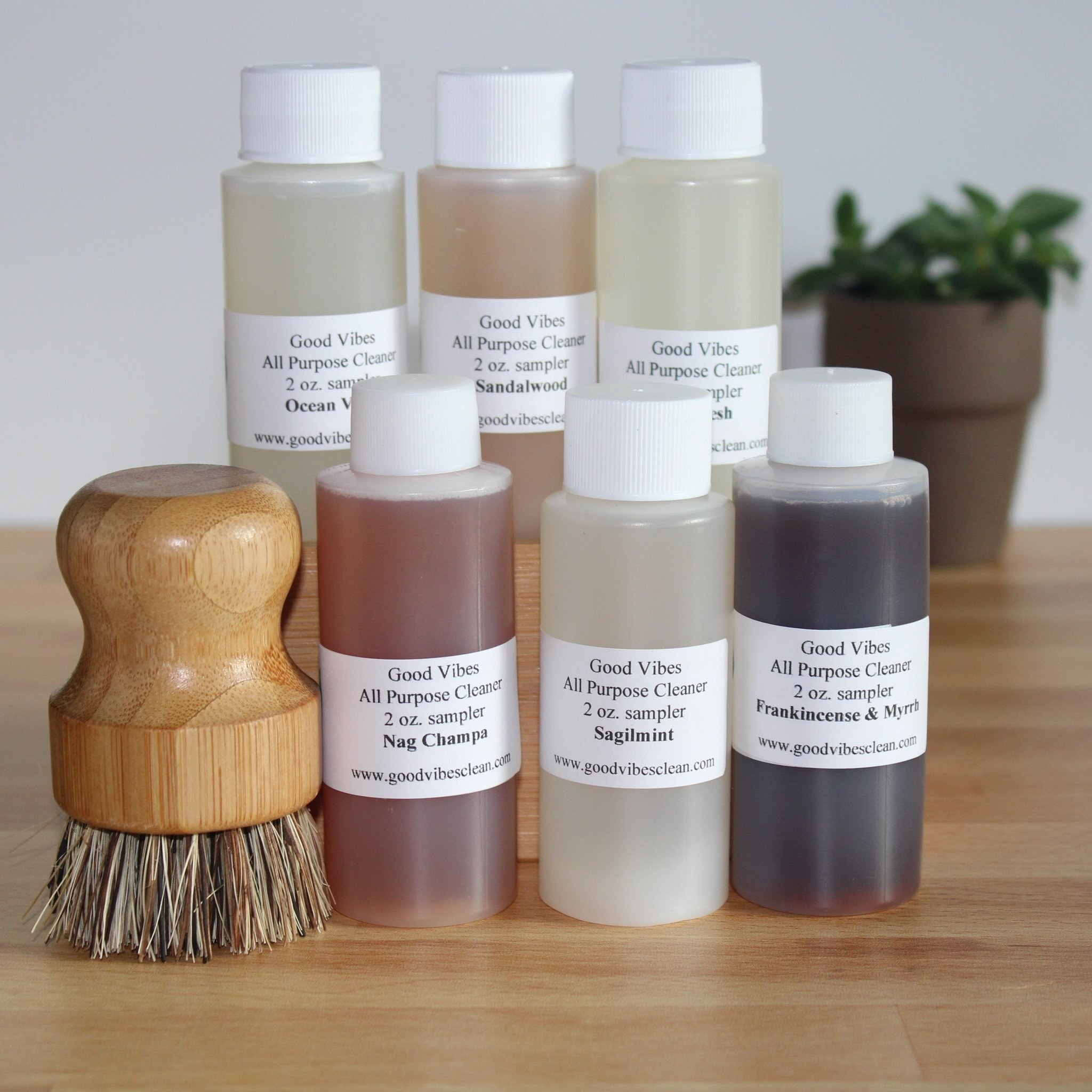 Several bottles of cleaning products in small bottles