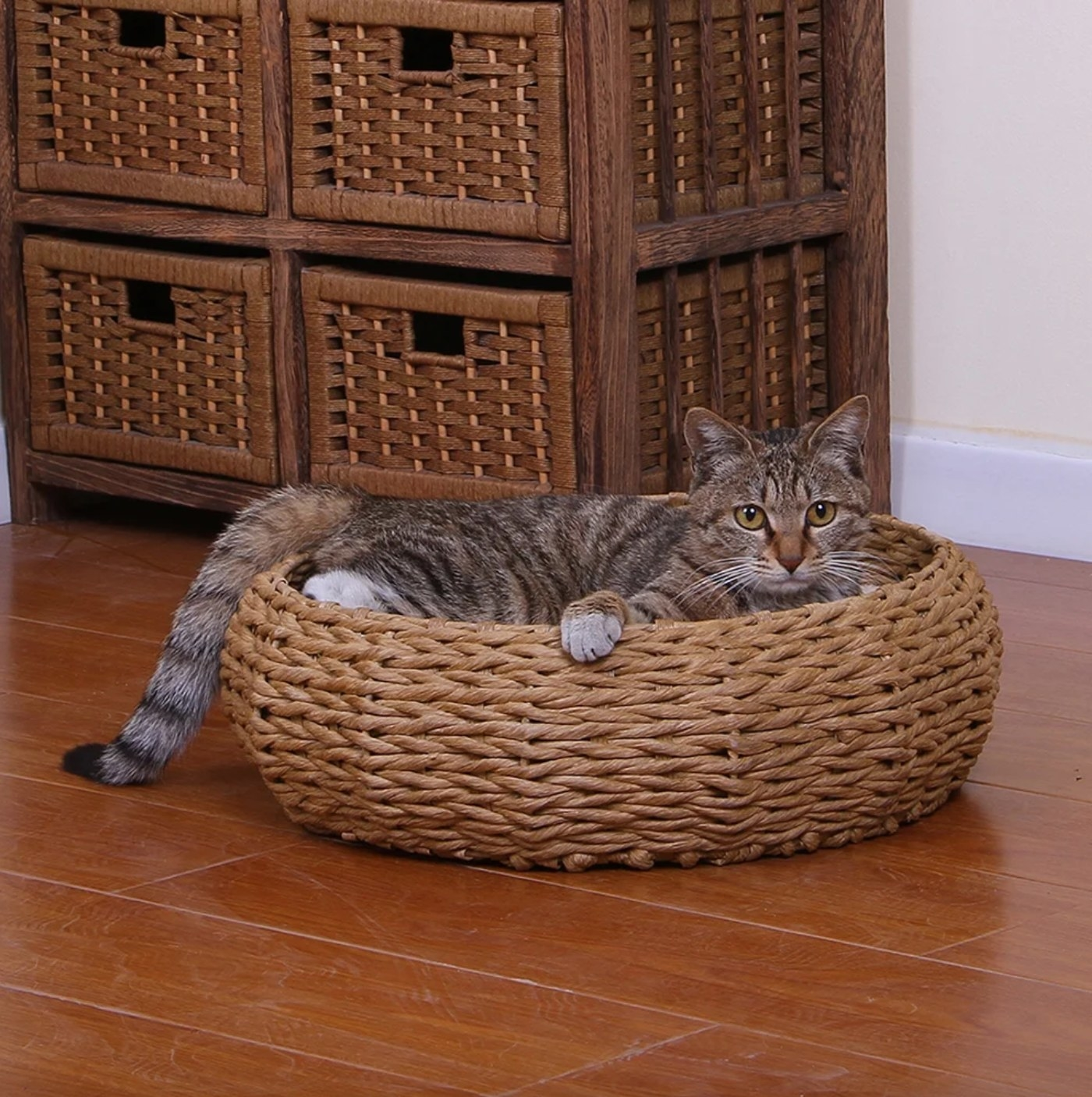 The rope cat bed