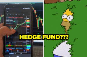 "stock market graphs asking ""hedge fund?"""