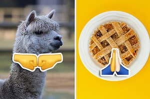 An alpaca being a fist bump and apple pie being a high five