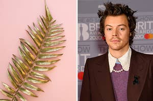 A golden plant is on the left laying flat with Harry Styles looking straight ahead