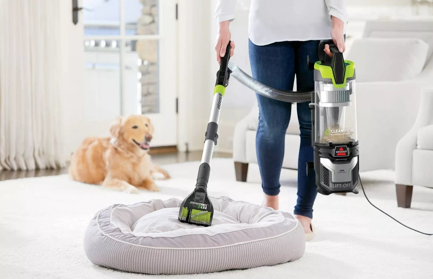 A model using the hose of the lift-off upright vacuum on a pet bed