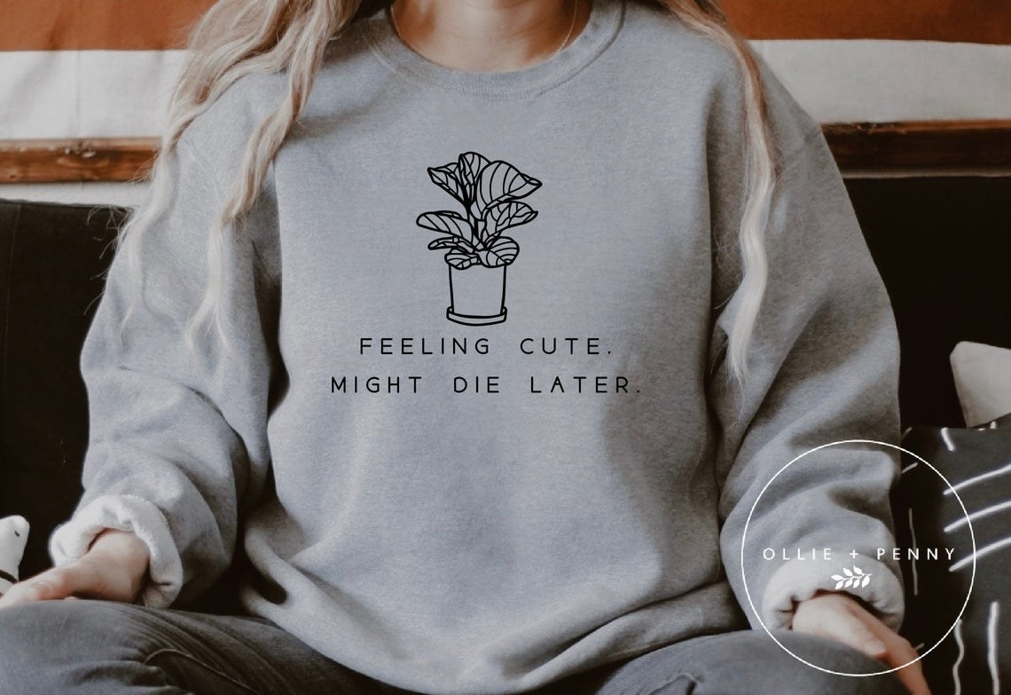 sweatshirt that says feeling cute might die later