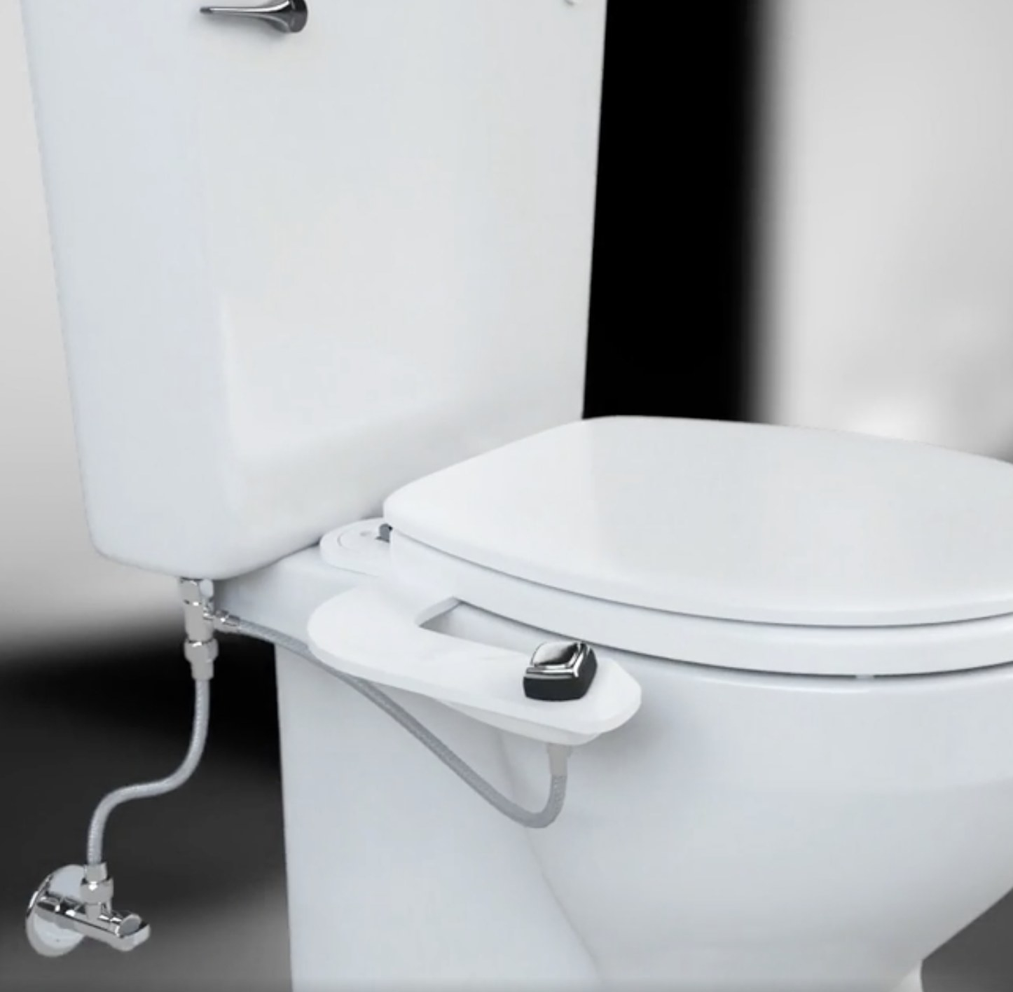 A bidet on a toilet