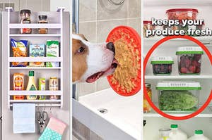 A hanging storage shelf, shower treat mat for your dog, and three produce saving containers