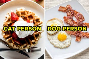 """On the left, some waffles topped with strawberries and cream labeled """"cat person,"""" and on the right, a plate with fried eggs and bacon labeled """"dog person"""""""