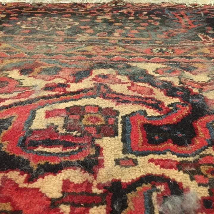 reviewer photo showing their rug covered in a layer of dog hair