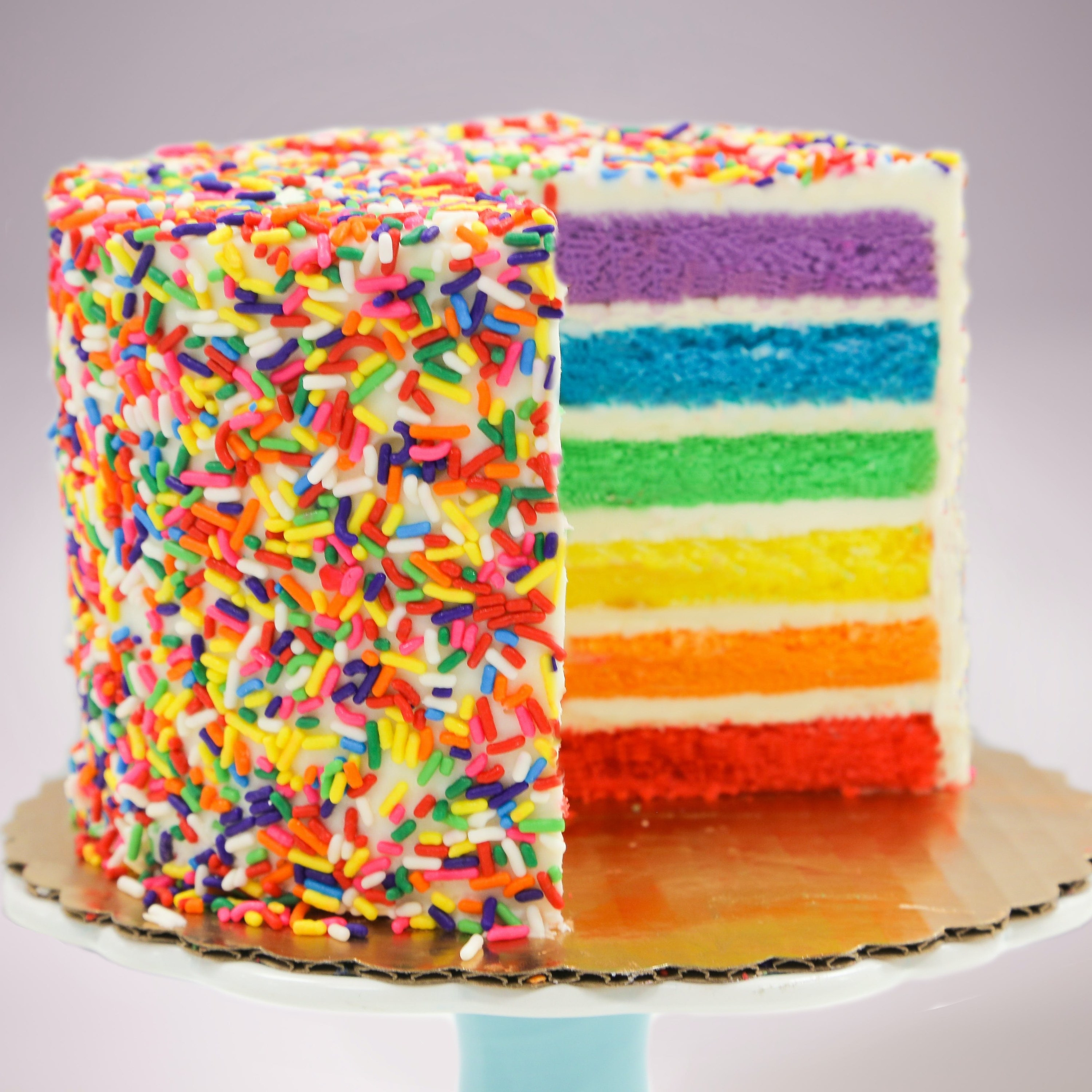 the cake with rainbow sprinkles