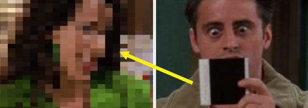 A pixelated Janice on the left and joey looking shocked at a polaroid photo on the right