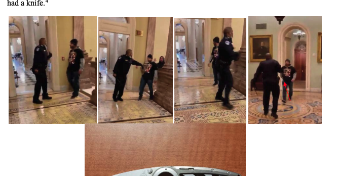 www.buzzfeednews.com: A Man Who Was Charged With Leading The Mob That Chased Officer Eugene Goodman In The Capitol Will Stay In Jail