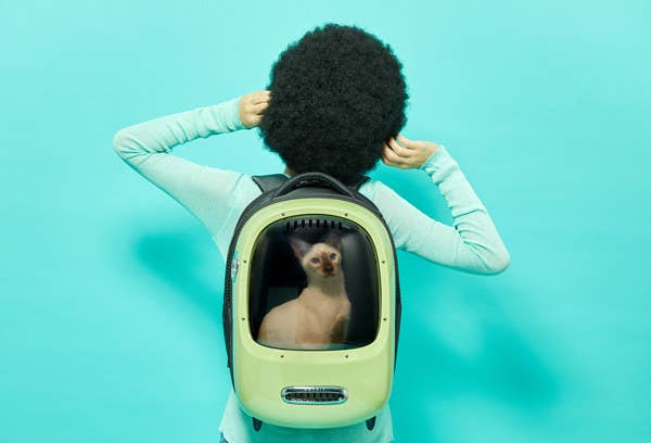 Woman wearing Breezy Dome cat backpack with cat inside.