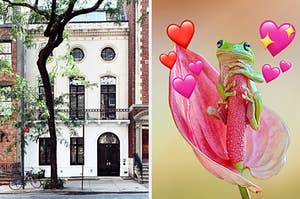 On the left, the exterior of an apartment on a city street with a tall tree out front, and on the right, a frog holding onto a flower with various heart emojis surrounding it