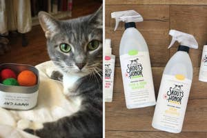 left image: cat with catnip balls, right image: urine cleaning kit