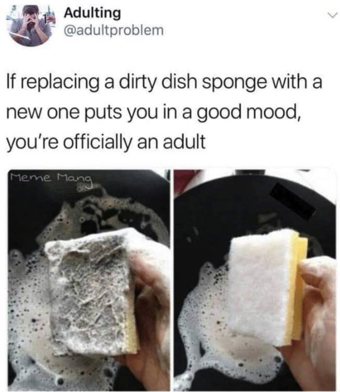 tweet about replacing sponges bringing you joy