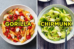 """On the left, some penne pasta with cheese and tomatoes labeled """"gorilla,"""" and on the right, some tagliatelle with pesto and cheese labeled """"chipmunk"""""""