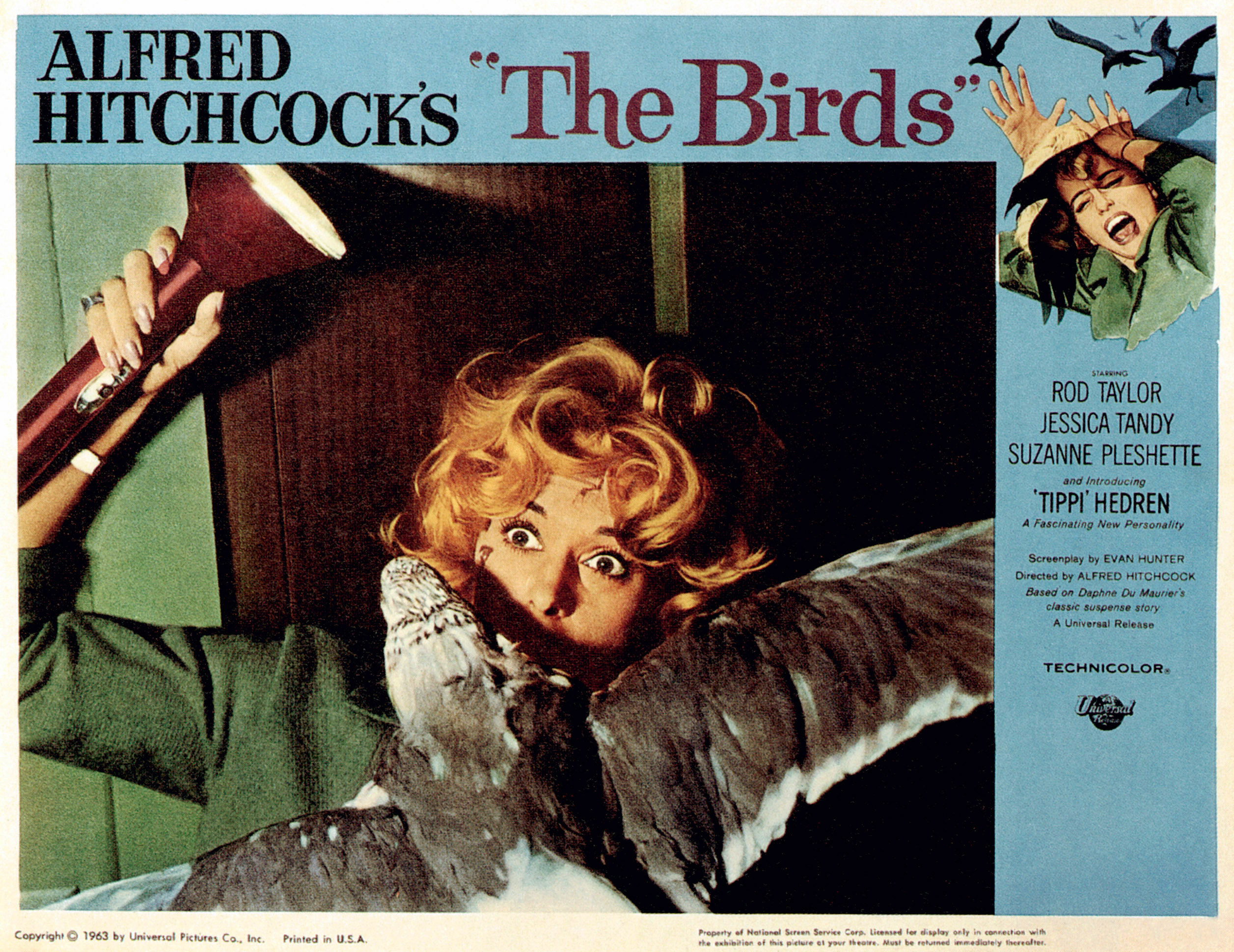 birds attacking Tippi in a poster for the film