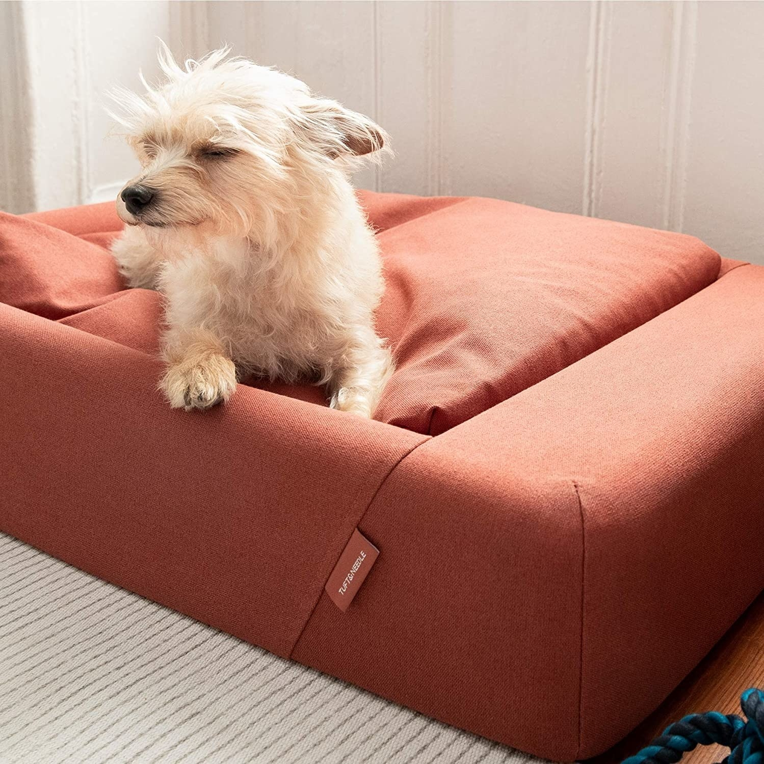 a dog in the burnt orange rectangular dog bed