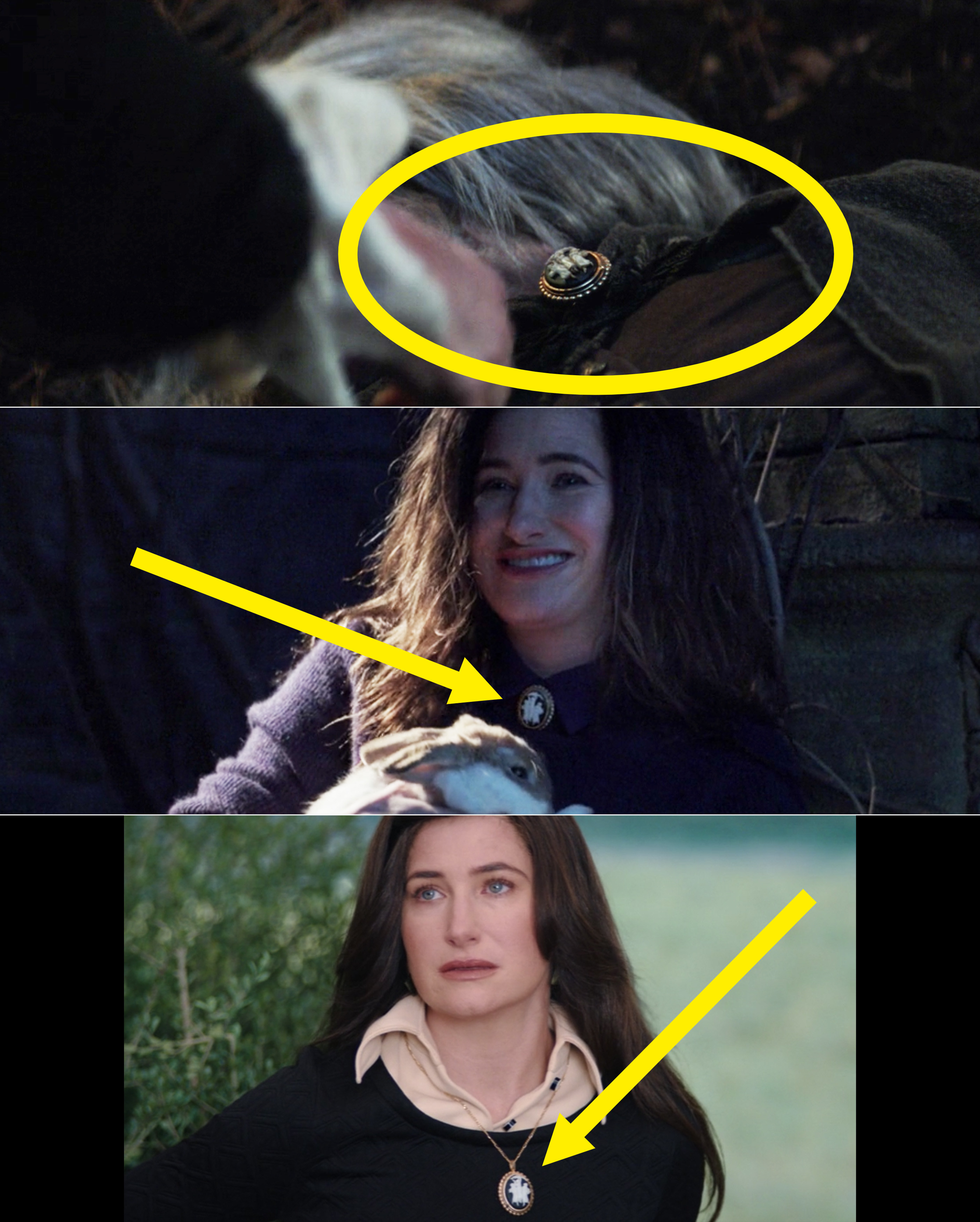 Circles and arrows pointing to Agatha wearing her broach around her neck