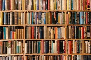 shelf after shelf full of classic books