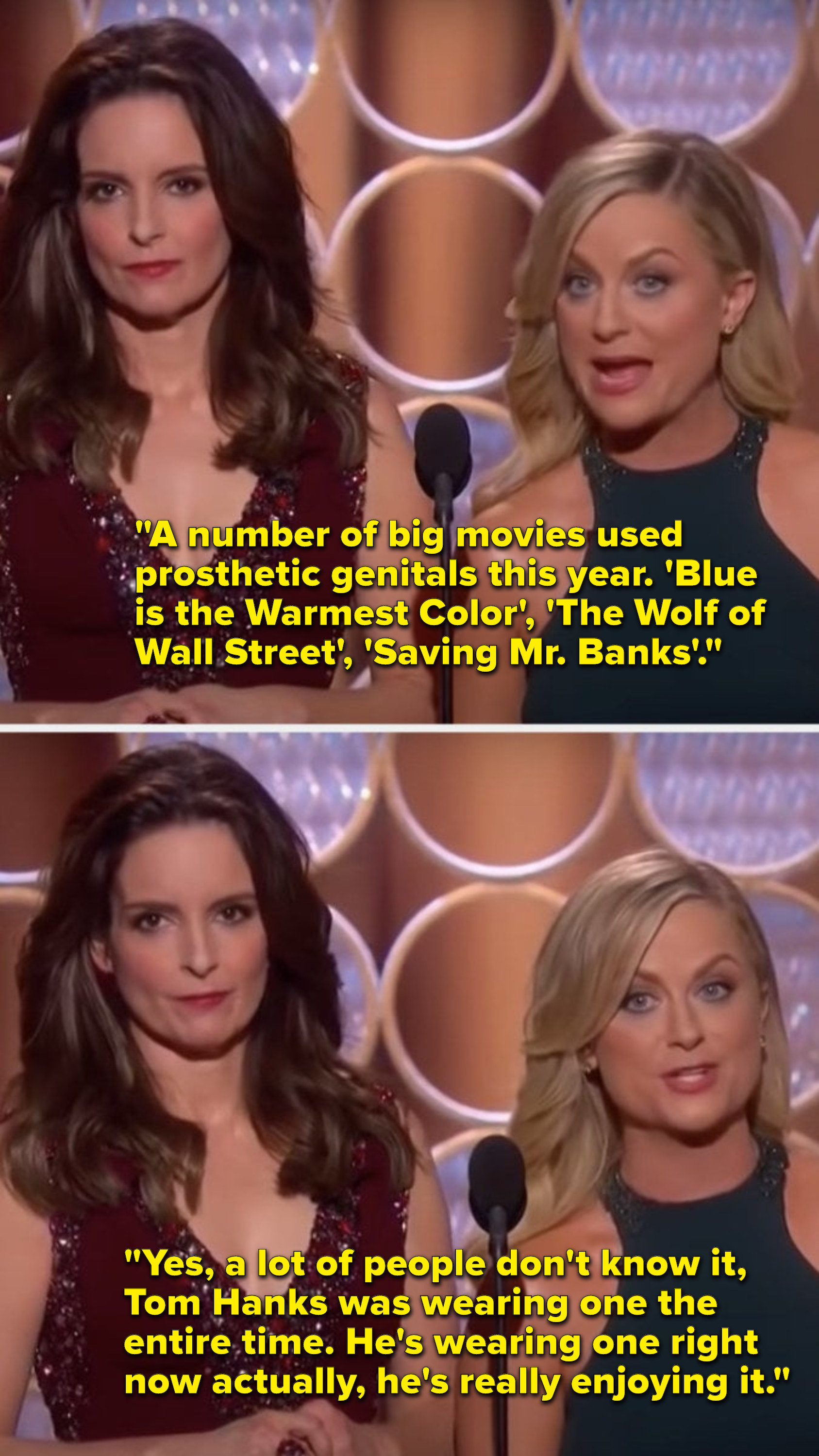 """Poehler says, """"A number of movies used prosthetic genitals this year, including 'Saving Mr. Banks', a lot of people don't know, Tom Hanks was wearing one the entire time, he's wearing one right now actually, he's really enjoying it"""""""