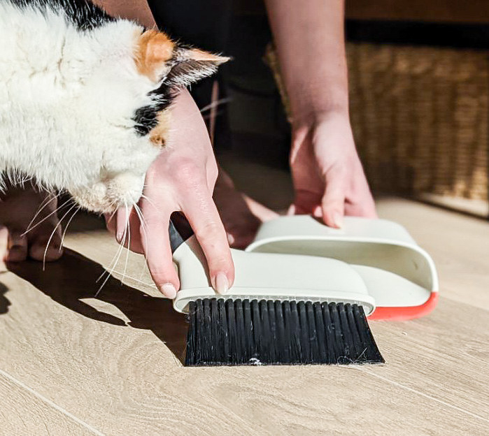 The mini broom sweeps dust into the mini dustpan as a cat watches