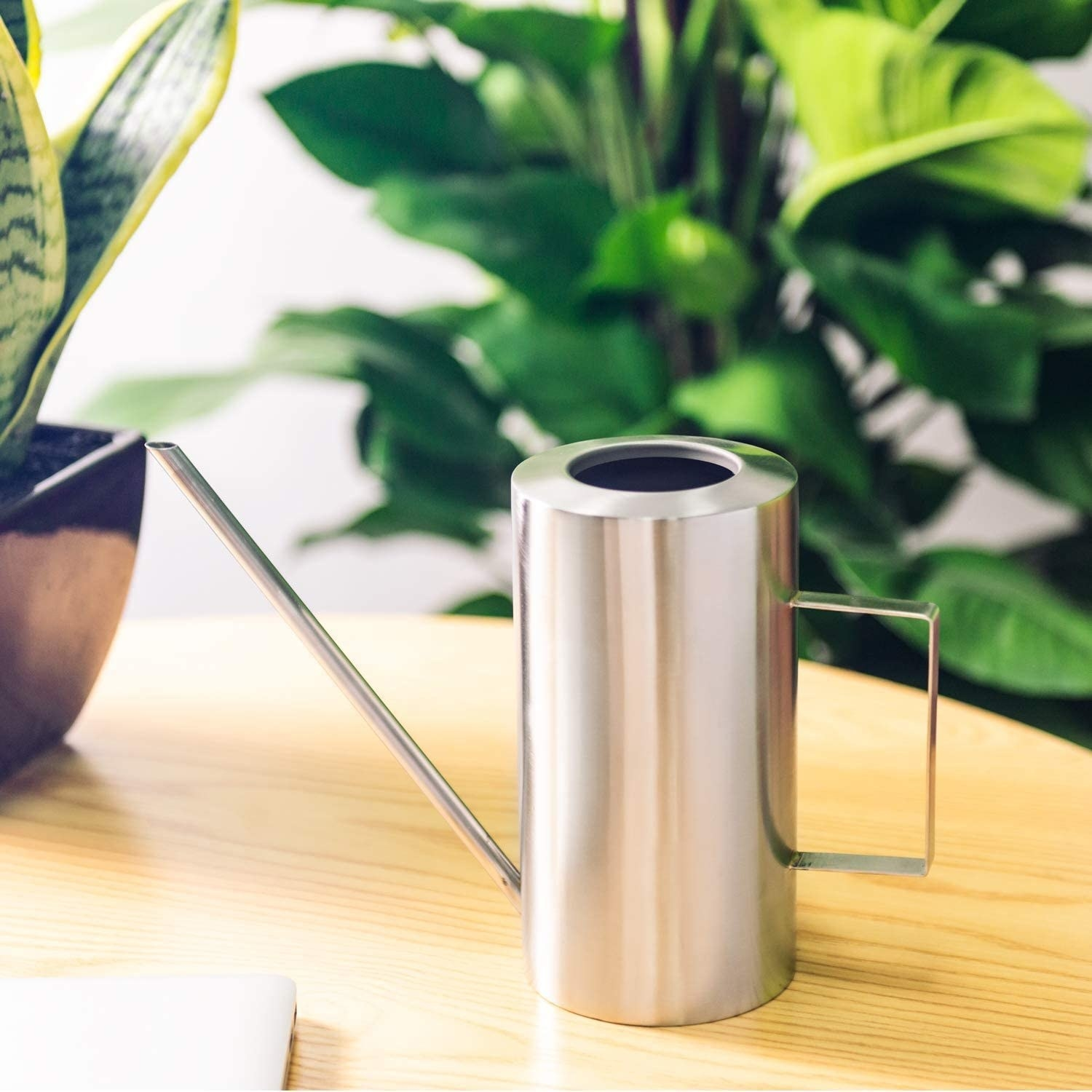 The stainless steel watering can with a long spout on a table next to a plant