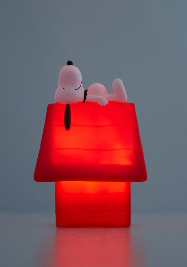 light that looks like snoopy sleeping on red house