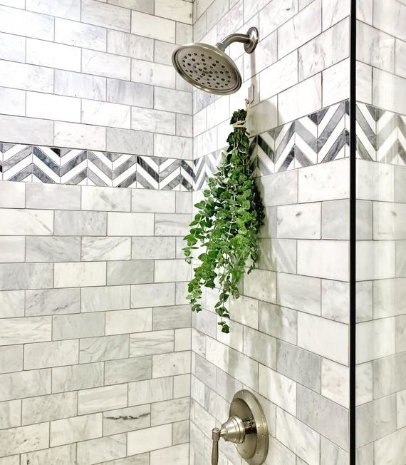 A large eucalyptus bundle hanging in a shower