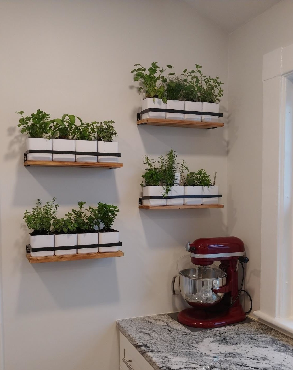 A reviewer using the shelves in their kitchen to hold small herbs