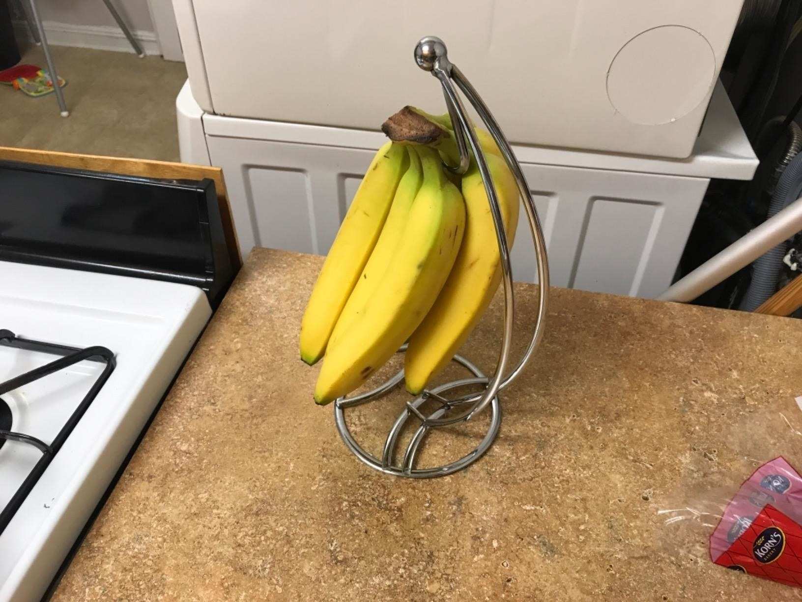 Reviewer banana bunch hanging from from wire tree