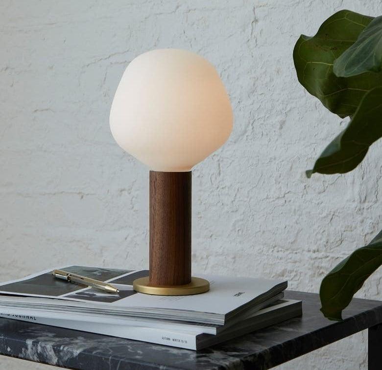 the light bulb lamp
