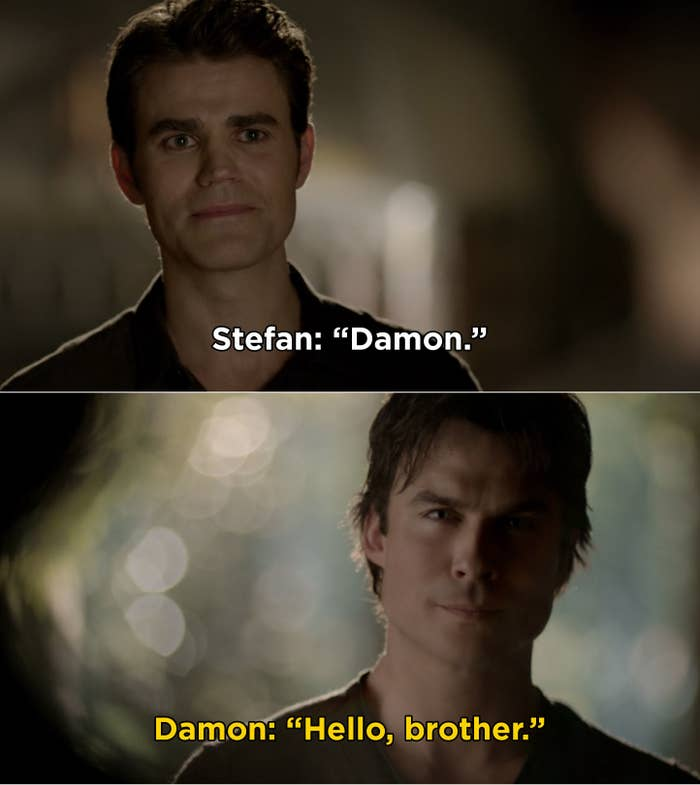 """Stefan saying, """"Damon"""" and Damon saying, """"Hello, brother"""" during """"The Vampire Diaries"""" series finale"""