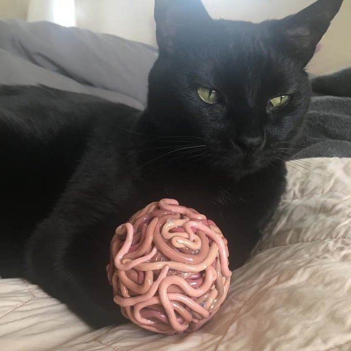 a black cat playing with a worm ball