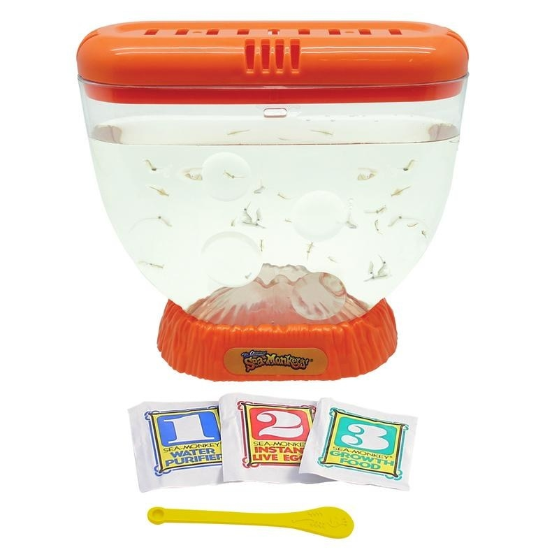 A Sea-Monkeys bowl filled with little Sea-Monkey fish, next to the bowl there are three sachets numbered 1 for water purifier, 2 for instant live egg and 3 for growth food, along with a spoon for mixing