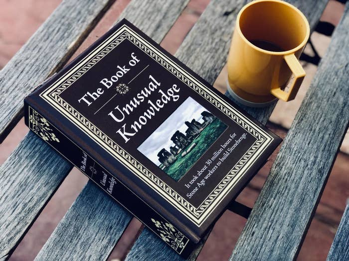 hardcover book that says the book of unusual knowledge