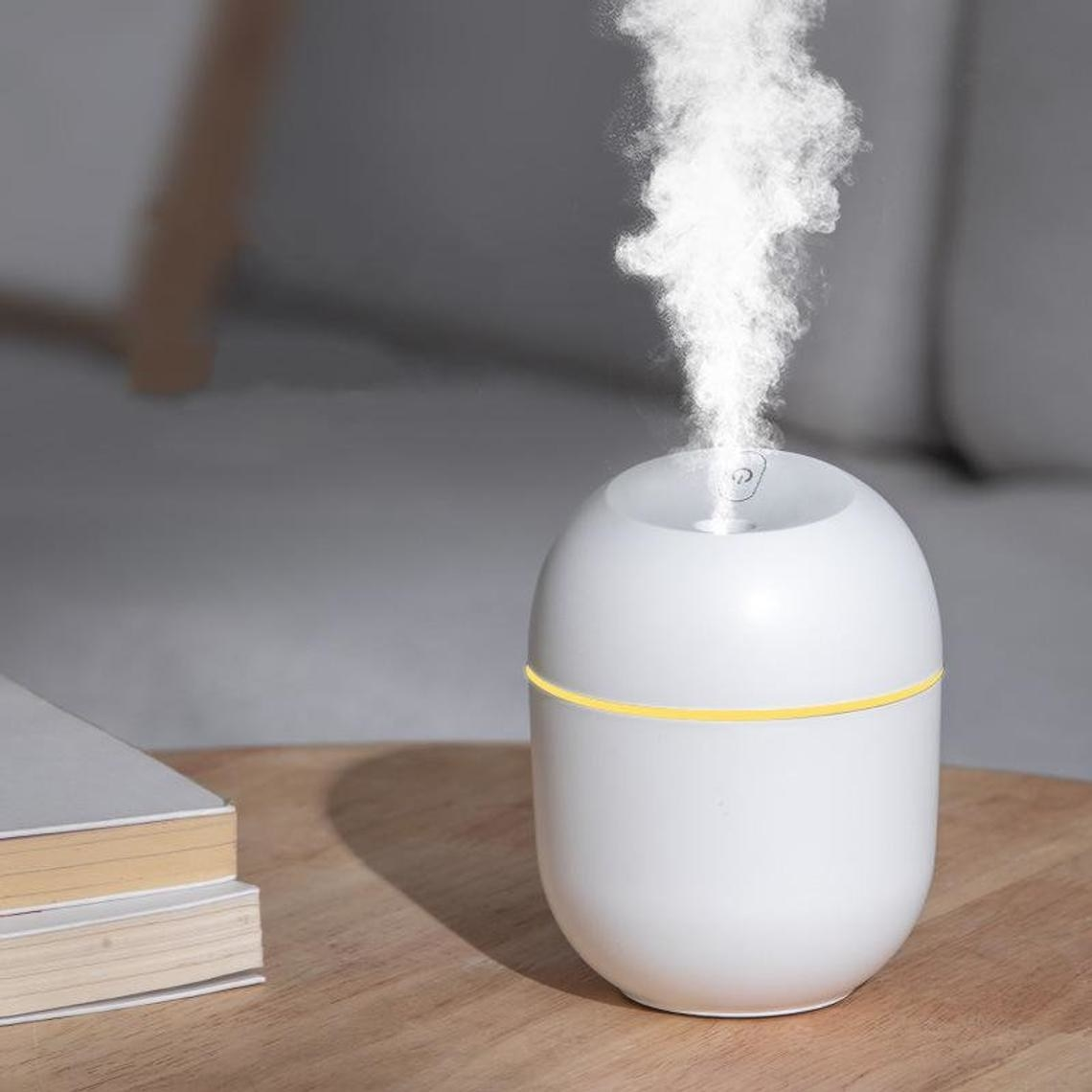 white oval shape humidifier