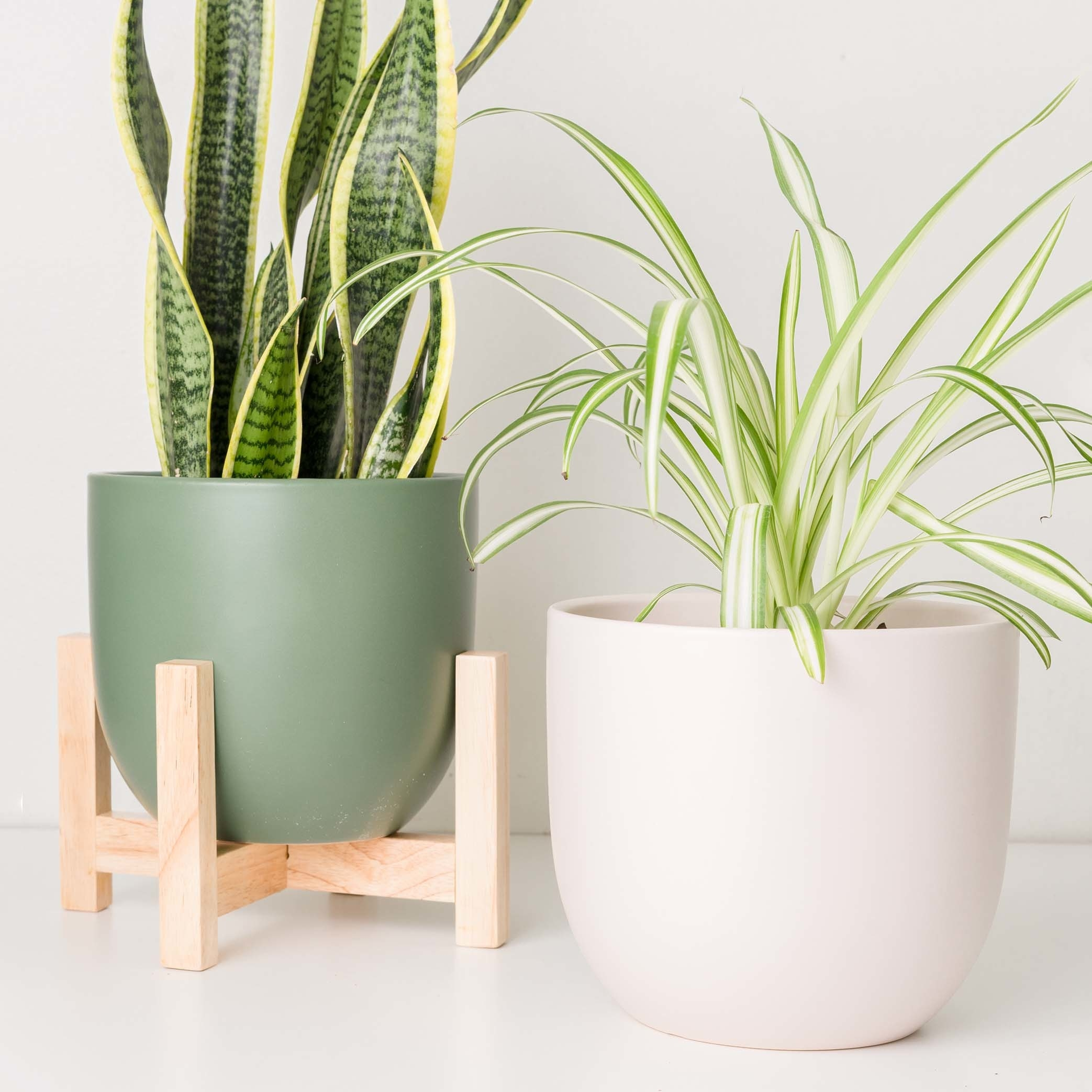 The pots, which are egg-shaped, with rounded edges, in pink and green