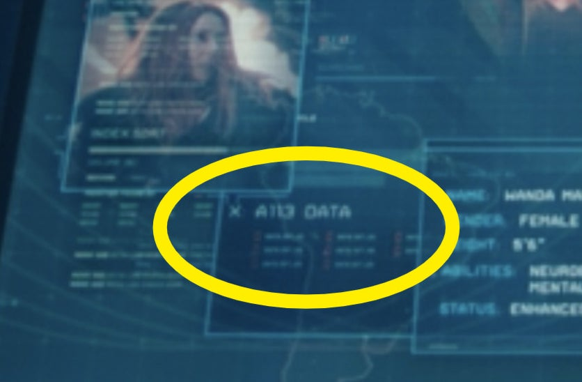 """A circle around """"A113 Data"""" on a computer monitor"""