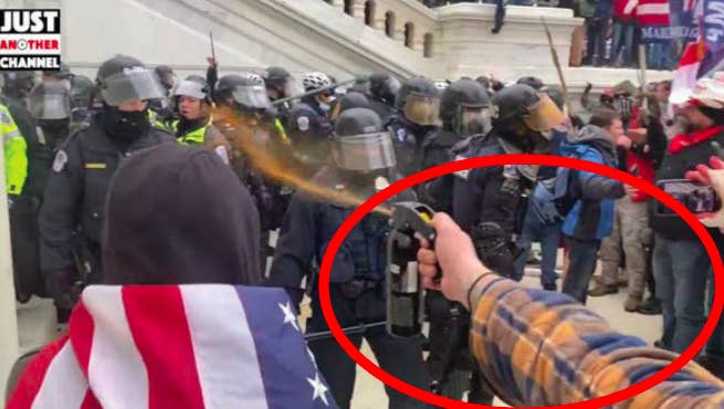 A video screenshot shows a red circle around a flannel-sleeved arm shooting Mace at a group of cops