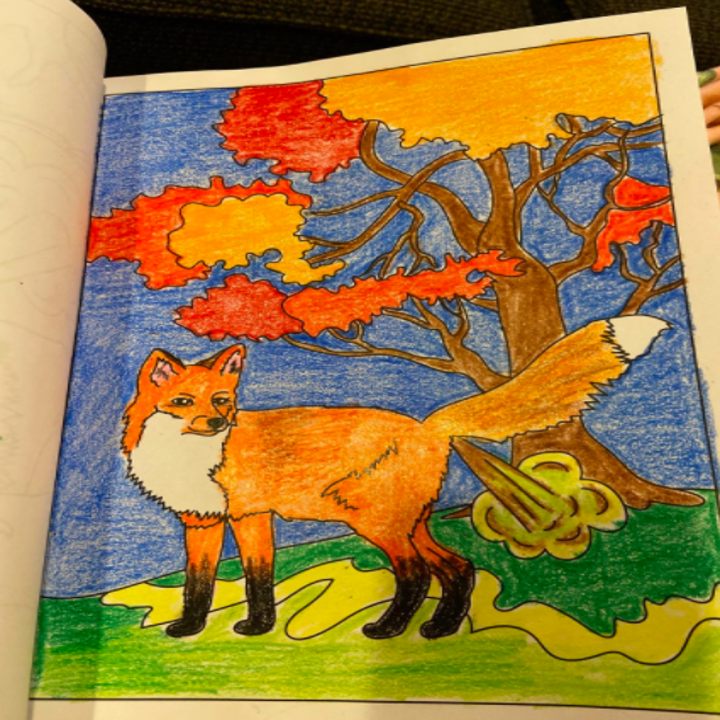 a reviewer photo of a farting fox from the coloring book