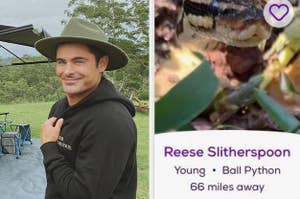 Zac Efron side by side with a snake called Reese Slitherspoon