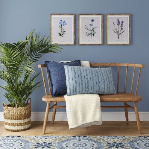 The framed botanical prints hanging horizontally on a wall