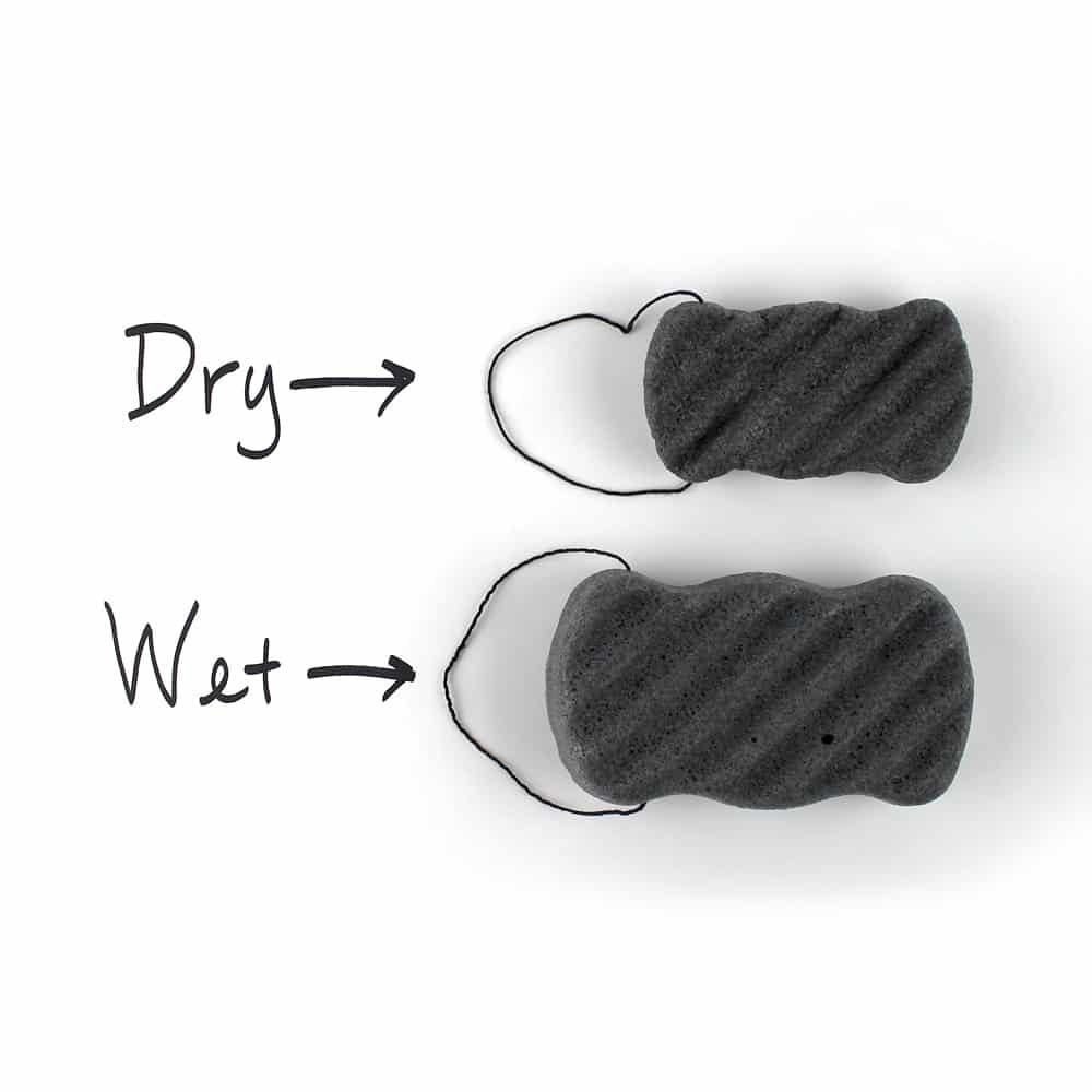 Comparison of the dry sponge versus a wet sponge showing the sponge expands in water