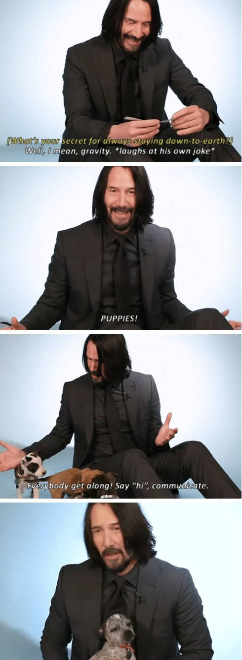 Keanu Reeves playing with puppies