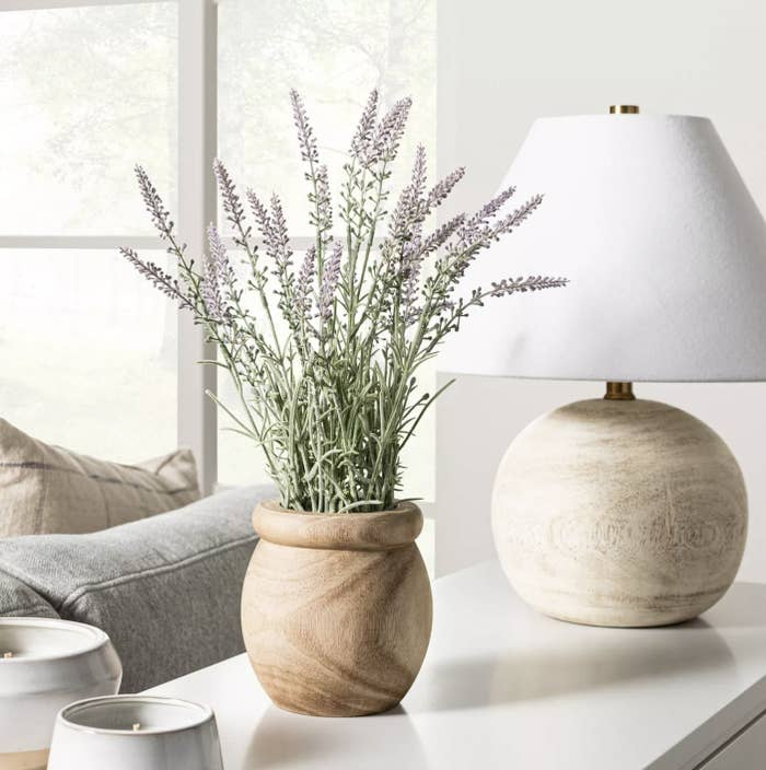 The lavender potted plant on a table