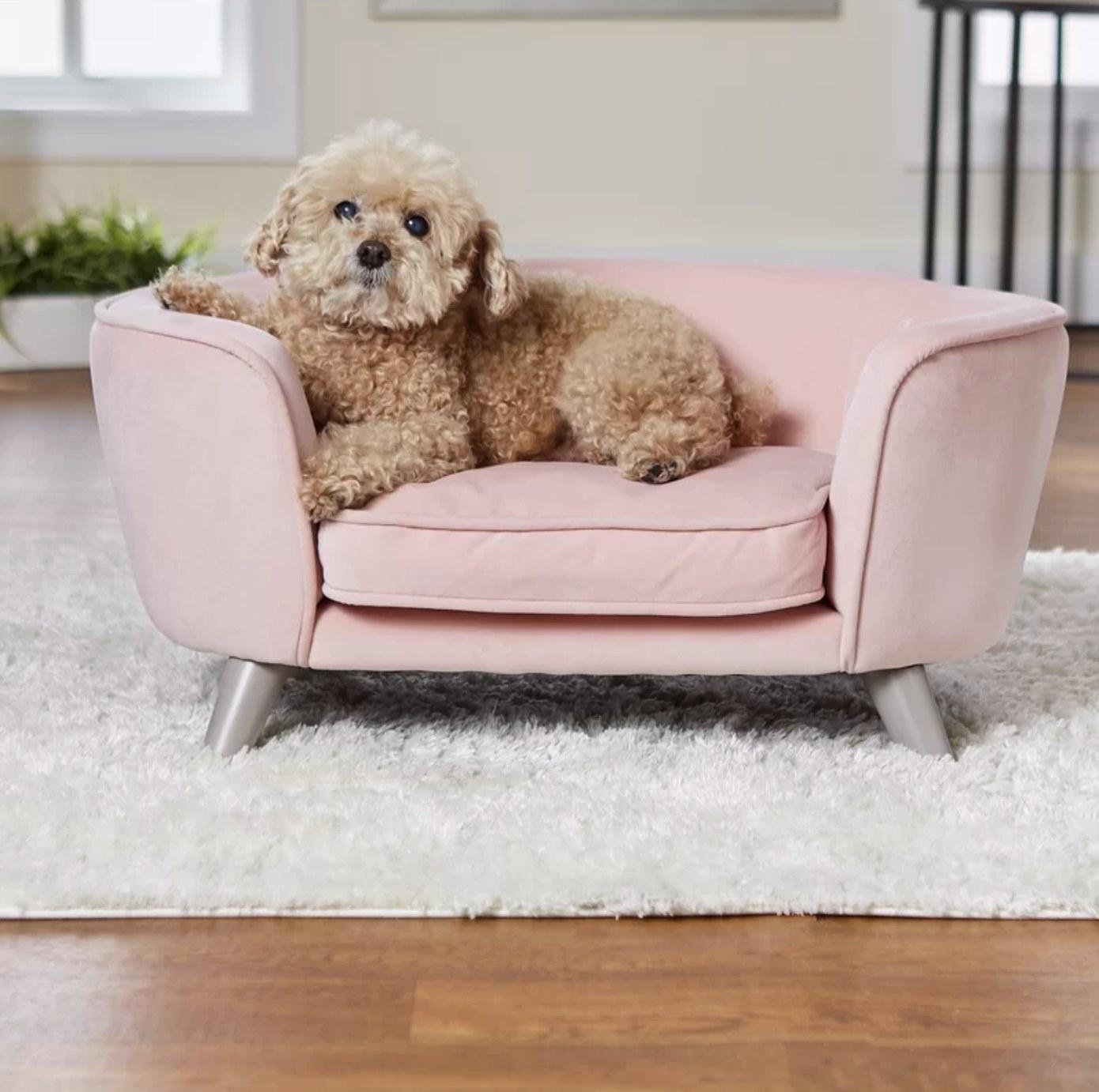 The dog sofa in blush
