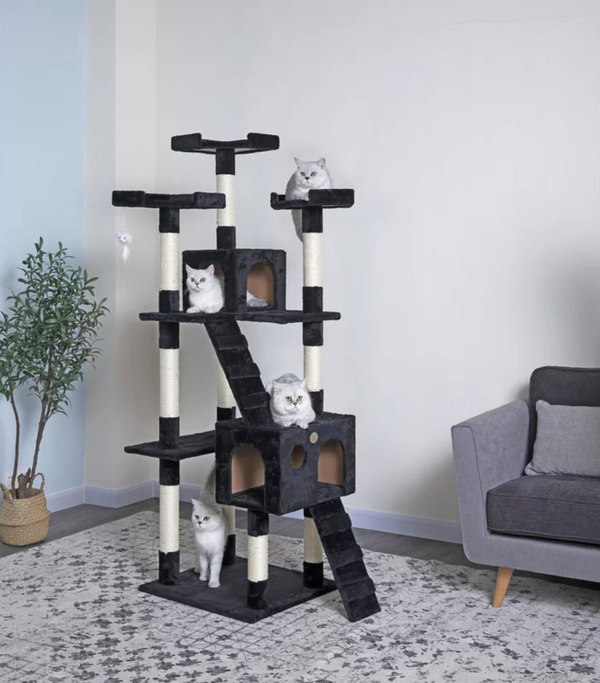 The six-foot tall cat tree in black